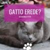 gatto erede eredità al gatto