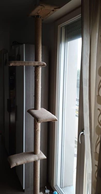 tiragraffi fatto in casa