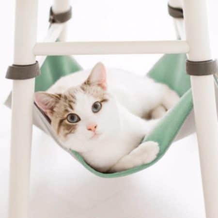 Amaca da sedia per gatti