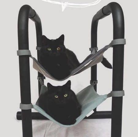 amache da sedia per gatti