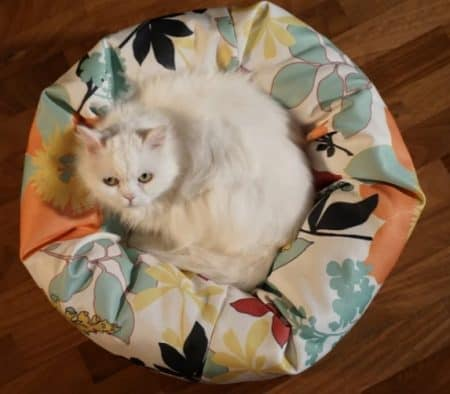 cuscino per gatti estivo