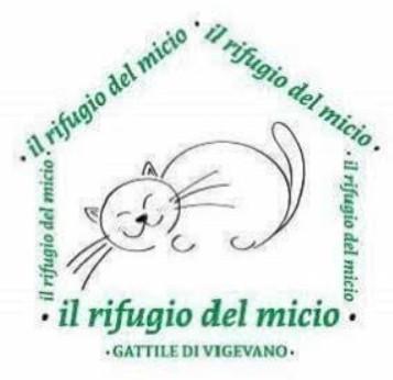 Gattile di Vigevano rifugio del micio