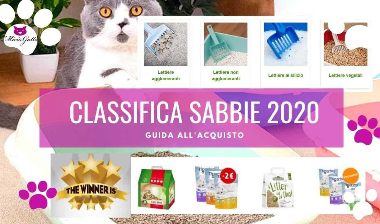 sabbia gatto 2020 classifica migliore