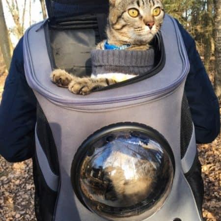 zaino per gatti