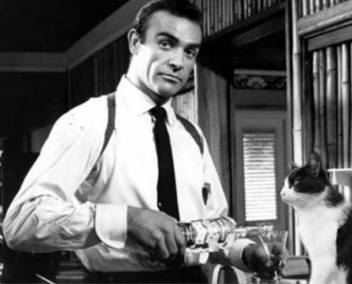Sean Connery e i gatti