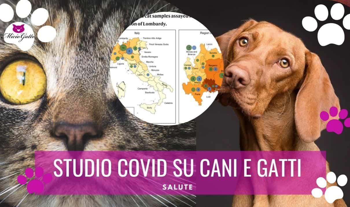 ultimo studio covid cani e gatti nature communications