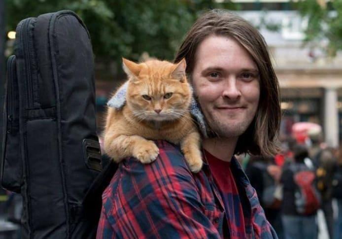 Gatto salta sulle spalle A spasso con Bob