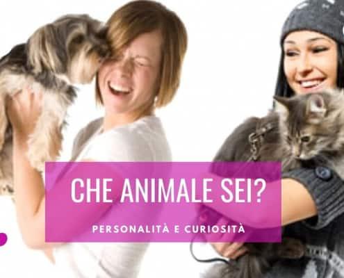che animale sei test personalita
