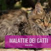 malattie dei gatti contagiose infettive cura sintomi