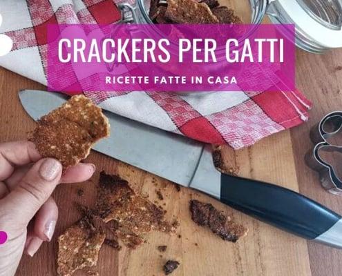 crackers per gatti fatti in casa cheffa dog ricette gatto