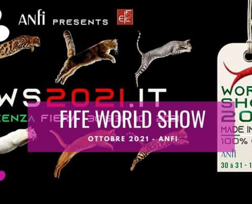 fife world show 2021 vicenza ottobre